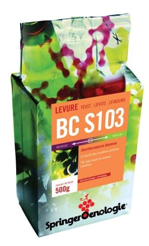BC S103